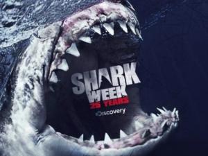 SharkWeek25
